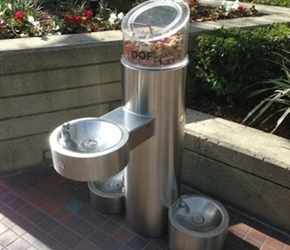 Pet Fountains